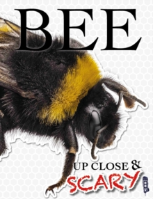 Up Close & Scary Bee, Paperback Book