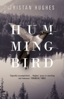 Hummingbird, Hardback Book