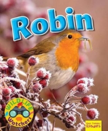 Wildlife Watchers: Robin, Paperback Book