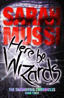 Here be Wizards : The Snowdonia Chronicles: book three, Paperback / softback Book