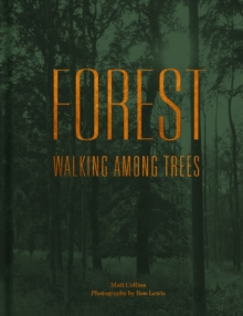 Forest : Walking among trees, Hardback Book