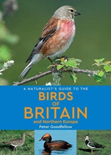 A Naturalist's Guide to the Birds of Britain and Northern Europe (2nd edition), Paperback / softback Book