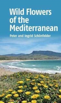 Wild Flowers of the Mediterranean, Paperback Book