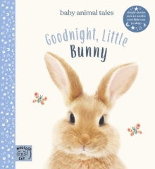 Goodnight, Little Bunny : Simple stories sure to soothe your little one to sleep, Hardback Book