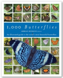 1000 Butterflies : An Illustrated Guide to the World's Most Beautiful Butterflies, Hardback Book