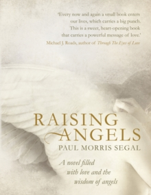 Raising Angels : A Novel Filled with Love and the Wisdom of Angels, Paperback / softback Book