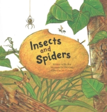 Insects and Spiders : Insects and Spiders, Paperback Book