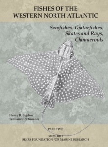 Sawfishes, Guitarfishes, Skates and Rays, Chimaeroids : Part 2, PDF eBook