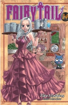 Fairy Tail 14, Paperback Book