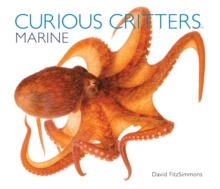 Curious Critters Marine, Hardback Book