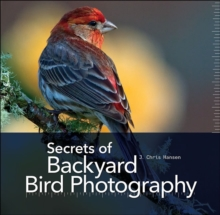 Secrets of Backyard Bird Photography, Hardback Book