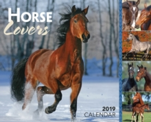 HORSE LOVERS 2019 DAYTODAY CALENDAR, Paperback Book