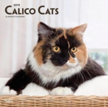 Calico Cats 2019 Square Wall Calendar, Calendar Book