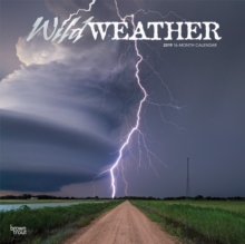 Wild Weather 2019 Square Wall Calendar, Calendar Book