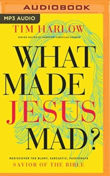 WHAT MADE JESUS MAD, CD-Audio Book