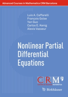 Nonlinear Partial Differential Equations, Paperback / softback Book