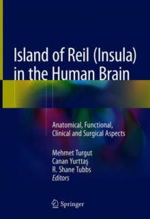Island of Reil (Insula) in the Human Brain : Anatomical, Functional, Clinical and Surgical Aspects, Hardback Book
