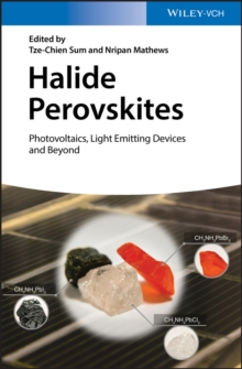 Halide Perovskites : Photovoltaics, Light Emitting Devices, and Beyond, Hardback Book