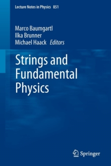 Strings and Fundamental Physics, Paperback / softback Book