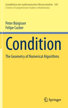 Condition : The Geometry of Numerical Algorithms, Hardback Book