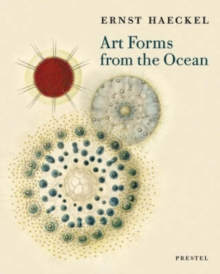 Art Forms from the Ocean : The Radiolarian Prints of Ernst Haeckel, Paperback / softback Book
