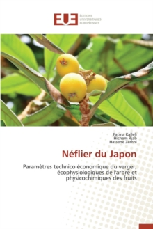 N flier Du Japon, Paperback / softback Book