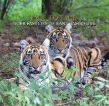 Face to Face : Tiger Families of Ranthambhore, Hardback Book