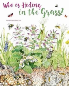 Bugs : The Secret Life of the Meadow, Hardback Book