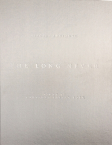 The Long Never, Hardback Book
