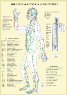 Special Points in Acupunture -- A4, Poster Book