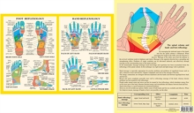 Hand and Foot Reflexology, Poster Book