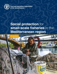 Social Protection for Small-Scale Fisheries in the Mediterranean Region - A Review, Paperback / softback Book