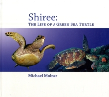Shiree : The Life of a Sea Turtle, Paperback Book