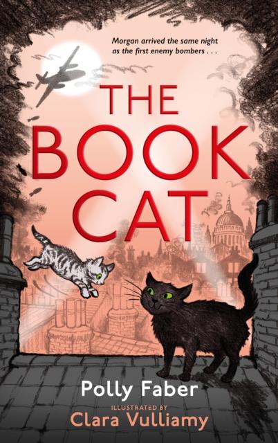 The Book Cat, Hardback Book